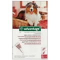 Advantage hond. 10kg-25kg (per stuk verkocht)