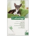 Advantage hond <4kg  (per stuk verkocht)