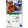 Advantage hond. 25kg-40kg (per stuk verkocht)