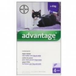 Advantage kat : >4kg ( per stuk verkocht)